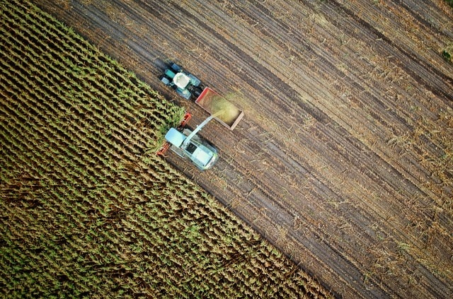 Prace rolne w polu